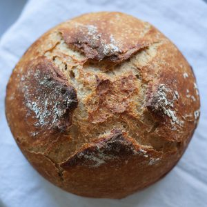 overnight_whole_wheat_beer_bread_2